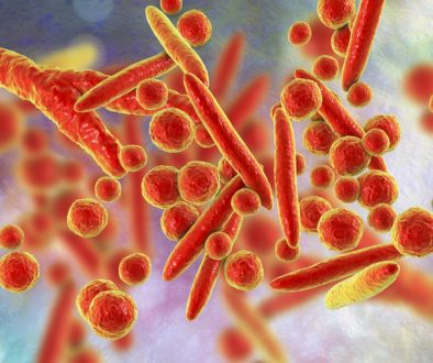 Mycoplasma bacteria, illustration